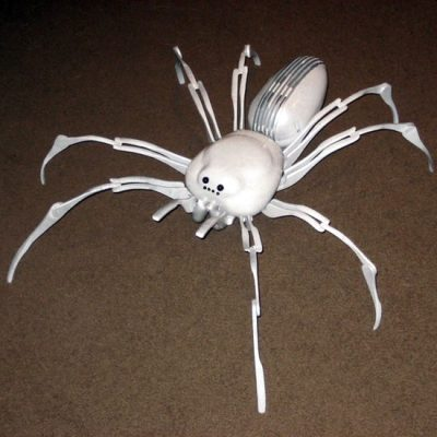 pearl-spider-1